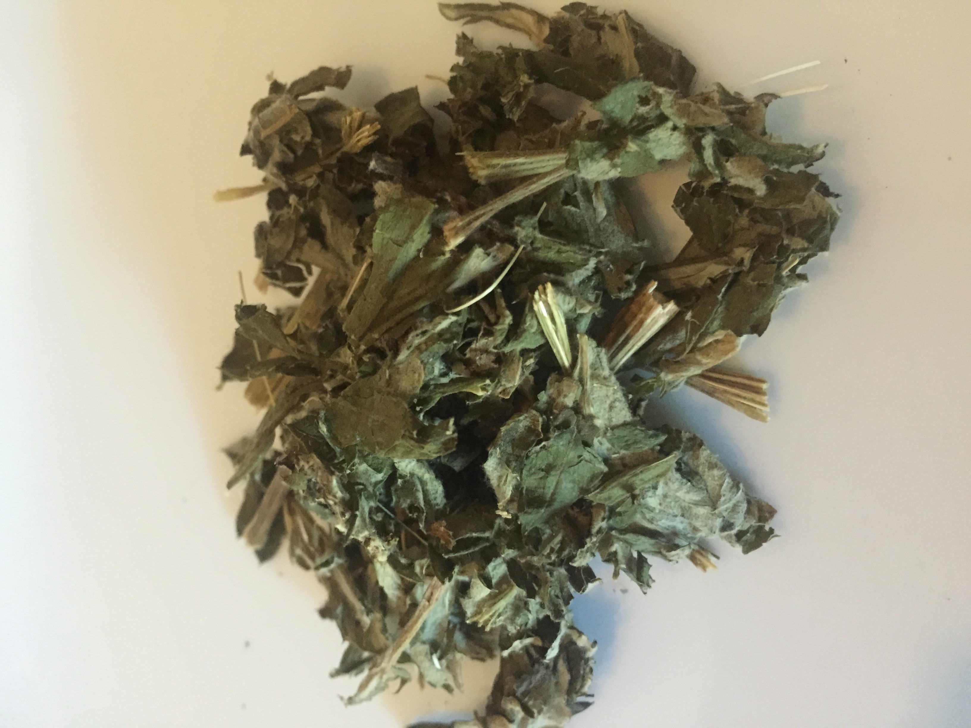 Tea Review – Yunomi Japanese Mugwort – My Tea Vault