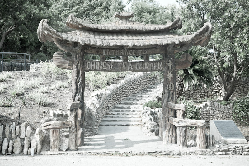Japanese Tea Garden San Antonio Texas My Tea Vault